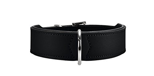 HUNTER BASIC Hundehalsband, beschichtetes...