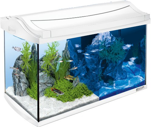 Tetra AquaArt LED Aquarium-Komplett-Set, 60...